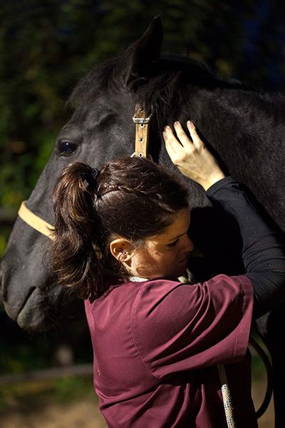 Ester-veterinaria