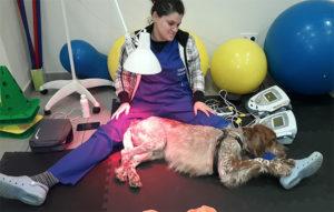 termoterapia-estersanroman